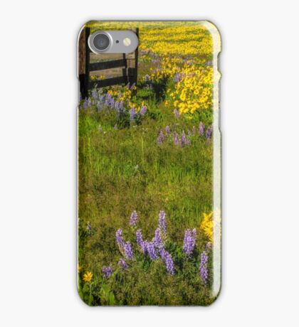 Wildflower meadow In the Columbia Gorge iPhone Case/Skin