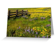 Wildflower meadow In the Columbia Gorge Greeting Card
