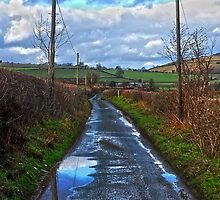 Road to Hopton Castle by Sam  Poole