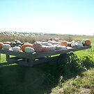 Cart of Pumpkins by paintbrush