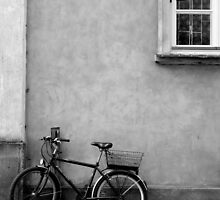 Bicycle by Clare Forder