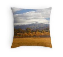 Ben Nevis in Autumn. Throw Pillow