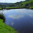 Fisherman&#x27;s Delight - Mossley, Lancashire by dawnandchris