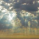 Morning Glory in Iowa by bicyclegirl