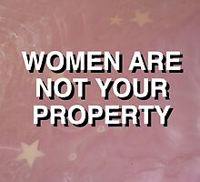 Women Are Not Your Property Sticker by technicallme