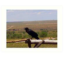 Black Bird Sitting On The Break Of Day  Art Print
