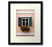 Beautiful window with flower box and shutters Framed Print