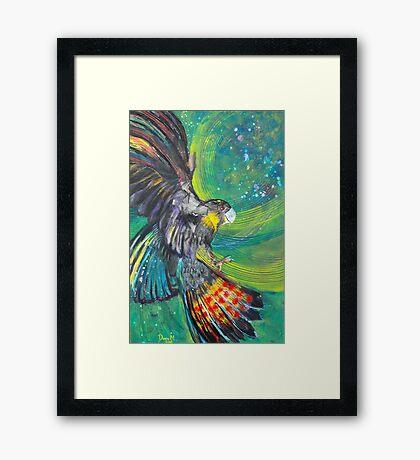 Black Cockatoo Framed Print