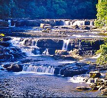 Aysgarth Falls by David Davies