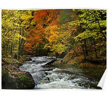 Smoky Mountain River Poster
