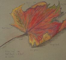 Autumn Leaf in Pastel by Geraldine M Leahy