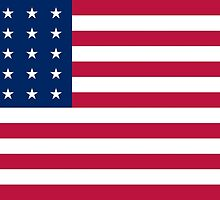 Historical Flags of the United States of America 1848 to 1851 US Flag with 30 Stars 13 Stripes by wetdryvac