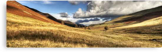 Newlands Valley, Cumbria, England by Bob Culshaw