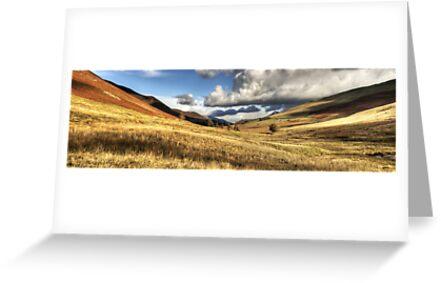 Newlands Valley, Cumbria, England by Bob Culshaw