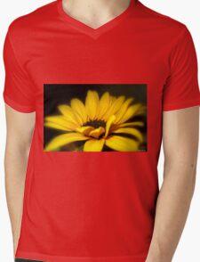 Goldilocks Mens V-Neck T-Shirt