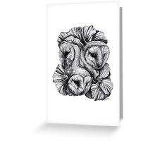 Compass - Barn Owls and Hibiscus Flowers Greeting Card