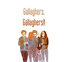 gallaghers. gallaghers!! Photographic Print