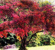 Autumn Fresco by hickerson