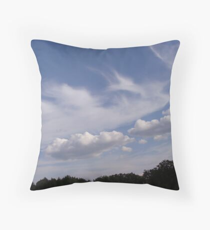 Absolutely Gorgeous Throw Pillow