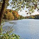 Newmiller Dam in Autumn by spemj