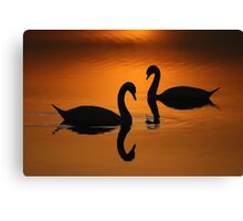 Together in Solitude Canvas Print
