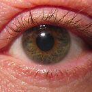 Eye by Peter Barrett
