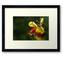 Bright isn't just clever Framed Print