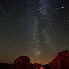 Perseid's and Milky Way at Loch Doon Castle by Roddy Atkinson