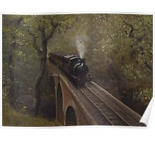 Dolgoch Viaduct Poster