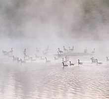 As the Fog Lifts by Gary Smith