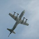 Zoom Climb - RAAF Orion, Williamtown Airshow 2010 by muz2142
