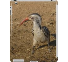 Southern Red Billed Hornbill in Black Rhino Reserve, South Africa iPad Case/Skin