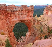 Natural Bridge at Bryce Canyon by Laurel Talabere