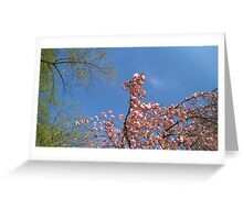Blossoming Tree I Greeting Card