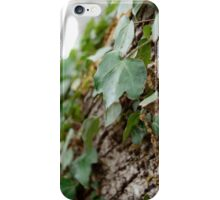 Elf Leaf iPhone Case/Skin