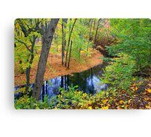 Rancocas Creek Canvas Print