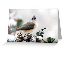 Titmouse in the Snow Greeting Card