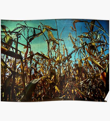 The Cornfields Rise Above Mankind Poster