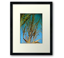 Lifting White Torches to the Blue Framed Print