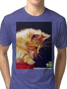 Cat On Red Tin Tri-blend T-Shirt