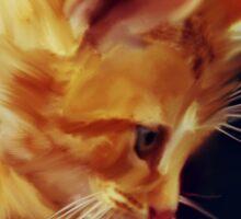 Cat On Red Tin Sticker