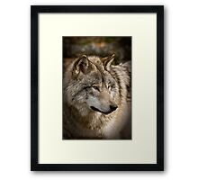 Directional View Framed Print