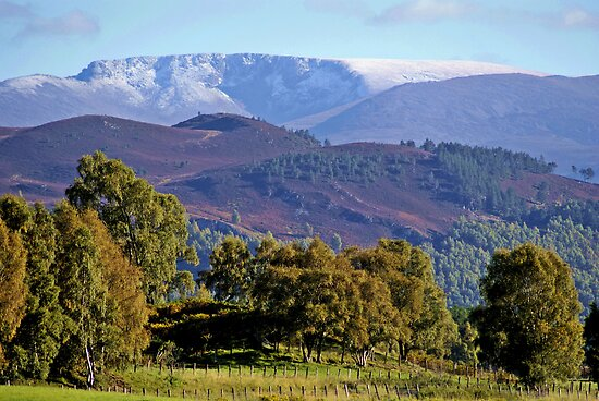 Cairngorms National Park., Scotland U.K by Kristina K