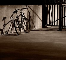 Bicycle in the Shadows by April Koehler