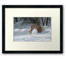 Look At My Snow Ball Ma! Framed Print