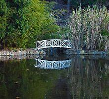 Bridge over Lily Ponds, Hobart Botanic gardens by Odille Esmonde-Morgan