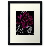 Faded Glory Framed Print