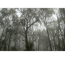 Foggy Mood  Photographic Print