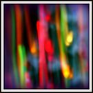 Streaking Christmas Lights by June Holbrook