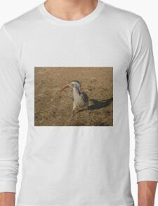 Southern Red Billed Hornbill in Black Rhino Reserve, South Africa Long Sleeve T-Shirt